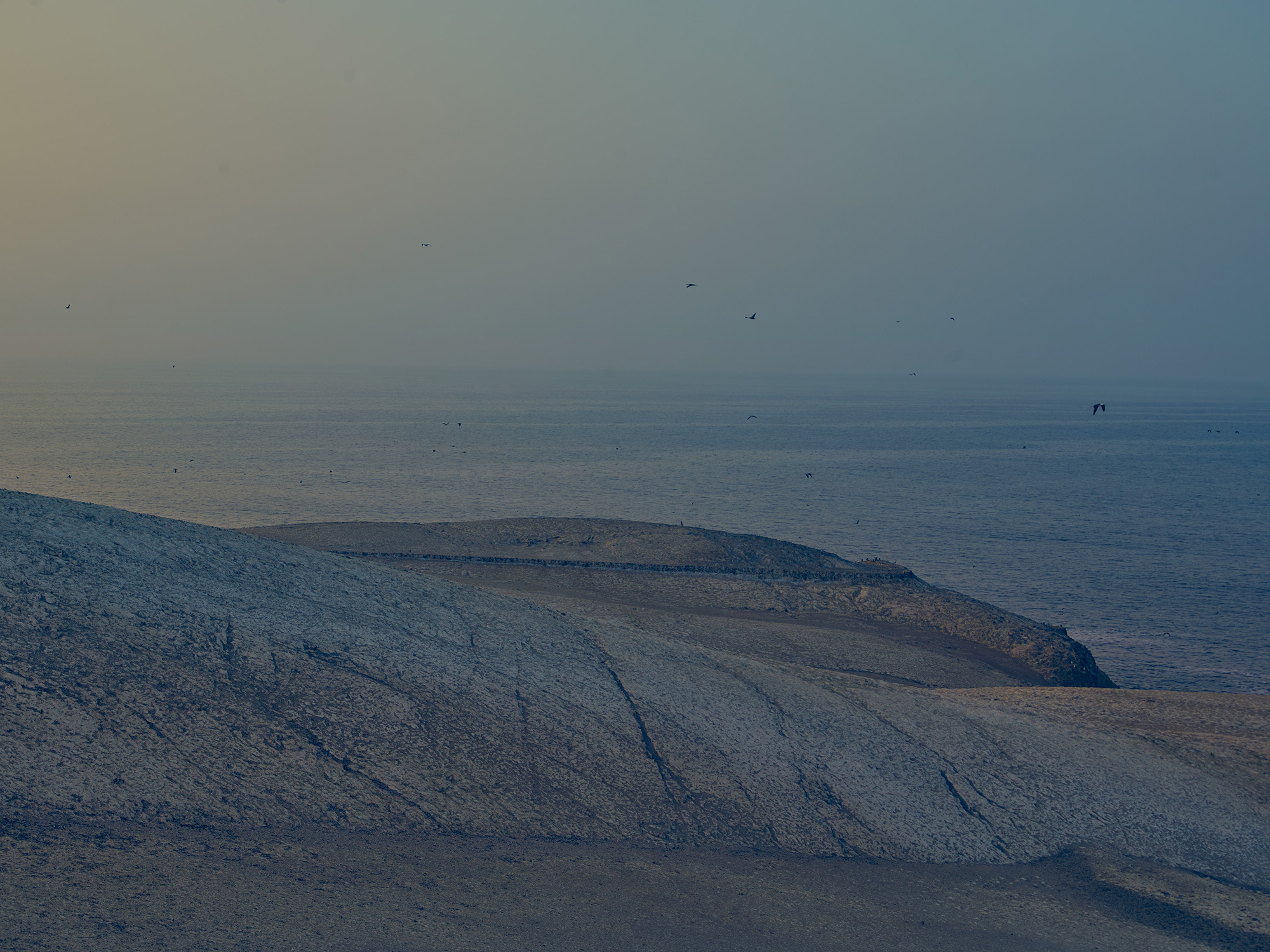Guarda Islas - Chincha Islands, Peru